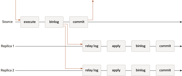 A transaction received by the master is executed, written to the binary log, then committed, and a response is sent to the client application. The record from the binary log is sent to the relay logs on Slave 1 and Slave 2 before the commit takes place on the master. On each of the slaves, the transaction is applied, written to the slave's binary log, and committed. The commit on the master and the commits on the slaves are all independent and asynchronous.